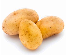 Produzione patate SOP