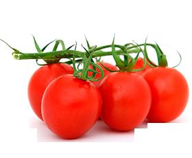 Pomodori Cherry SOP